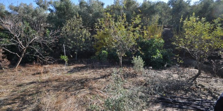 150000 Euro Plot With House For Sale in Alanya Demirtas 26