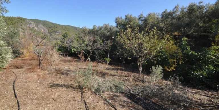 150000 Euro Plot With House For Sale in Alanya Demirtas 27