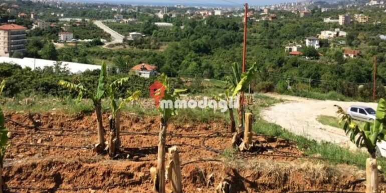 192000 Euro Plot For Sale in Alanya Oba 1