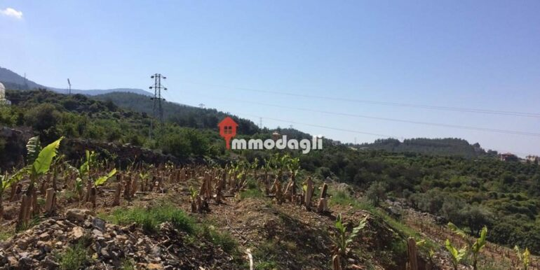 192000 Euro Plot For Sale in Alanya Oba 4