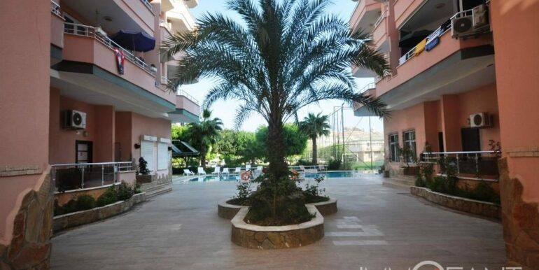 350 Euro Apartment For Rent in Alanya 5